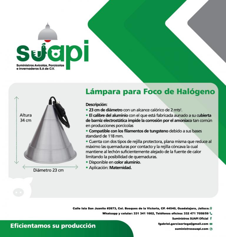Lampara-para-foco-halogeno